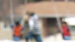 CTV Kitchener: Adoptions on hold