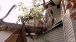 Tree crashes into bedroom during lightning storm