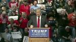 Politifact editor on fact-checking Trump