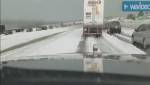 Caught on cam: 'Chilling' Calgary drive in June
