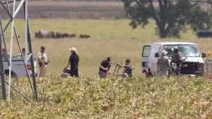 """The partial frame of a hot air balloon is visible above a crop field at the scene in a field near Lockhart, Texas where a hot air balloon carrying at least 16 people collided with power lines Saturday, July 30, 2016, causing what authorities described as a """"significant loss of life."""" (Ralph Barrera/Austin American-Statesman via AP)"""