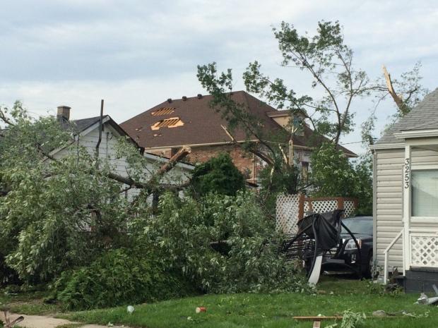 Storm damage on Riberdy Road in Windsor, Ont., on Thursday, Aug. 25, 2016. (Michelle Maluske / CTV Windsor)