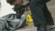 CTV Windsor: Elderly woman stabbed