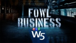 W5 investigates how turkeys get to your plate. Undercover footage from the animal rights group Mercy for Animals reveals the what goes on in the slaughterhouse. It may look cruel -- but as W5 discovered under Canada's laws -- it is entirely legal.