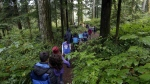 Outdoor School students walk through the dense forest on their way to a lesson at Camp Howard in Mount Hood National Forest near Corbett, Ore. on Oct. 6, 2016. (AP / Don Ryan)