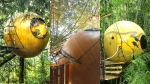 """A trio of unique Qualicum Beach, B.C. treehouses was named among TripAdvisor&#39;s &#39;<a href=""""https://www.tripadvisor.ca/TripNews-a_ctr.2015quirkyhotelsEN"""" target=""""_blank"""">12 hotels you need to see to believe</a>.&#39; The ball-shaped accommodations are known as Free Spirit Spheres, located in the canopies of trees in the town between Nanaimo and Courtenay.   <br> The company has three treehouses – Eve, Eyrn and Melody – <a href=""""http://freespiritspheres.com/"""" target=""""_blank"""">available for rent</a> at rates between $175 and $314 per night. (Photos via Free Spirit Spheres unless otherwise stated)"""