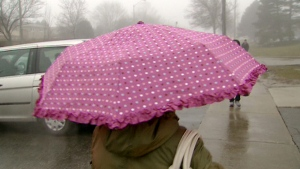 An umbrella was required to comfortably navigate the streets of Toronto on Monday, Jan. 25, 2010.